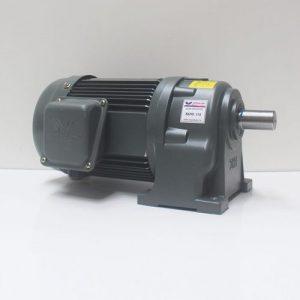 Motor giảm tốc Wanshsin chân đế 0.75kw 1/10